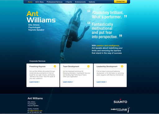 Ant Williams website build
